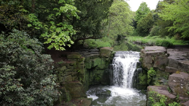 waterfall in jesmond dene - falling water stock videos & royalty-free footage