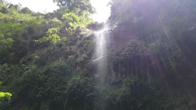 waterfall in jungle, on pipeline trail of boquete panama, camera tilting down - america centrale video stock e b–roll