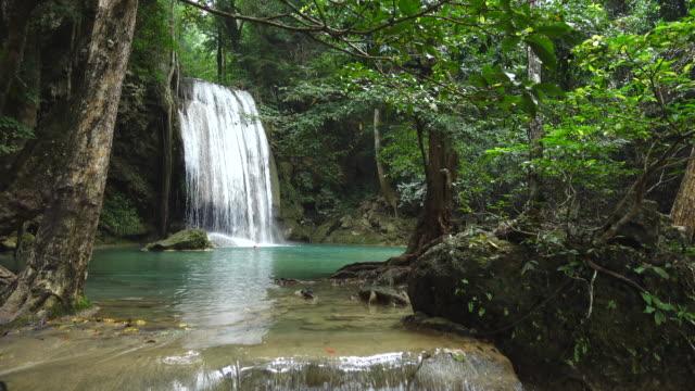 vidéos et rushes de cascade dans la jungle de la thaïlande - végétation verdoyante