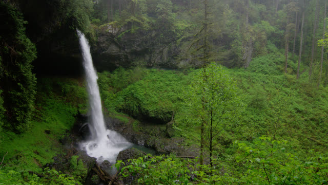 WIDE PAN waterfall in lush green forest in rain