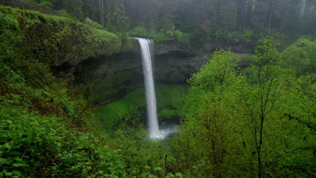 WIDE SHOT waterfall in lush green forest in rain