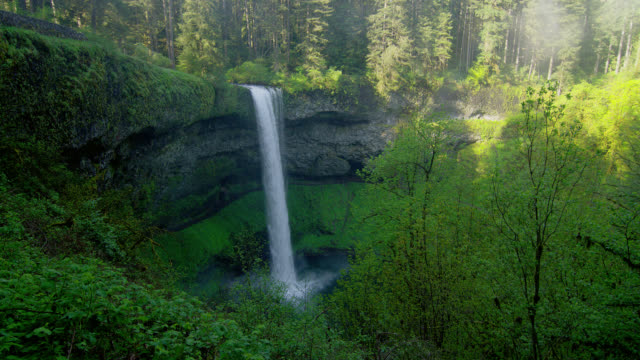 WIDE PAN waterfall in lush green forest