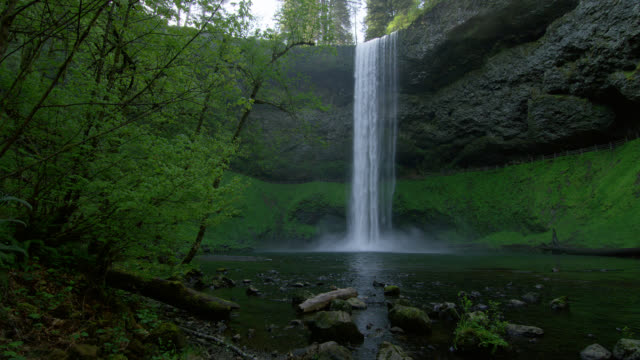 LOW ANGLE WIDE PAN waterfall in lush green forest