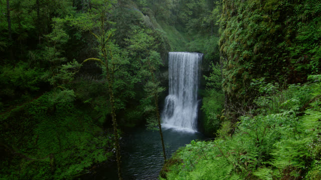 HIGH ANGLE WIDE SHOT waterfall in lush green forest