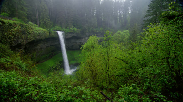LONG PAN waterfall in lush green forest with mist in rain