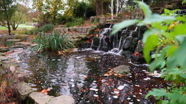 vídeos de stock, filmes e b-roll de waterfall in regents park, london. - parque regents