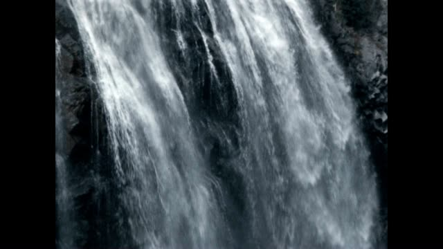 waterfall in the cascades of the pacific northwest - mount rainier stock-videos und b-roll-filmmaterial