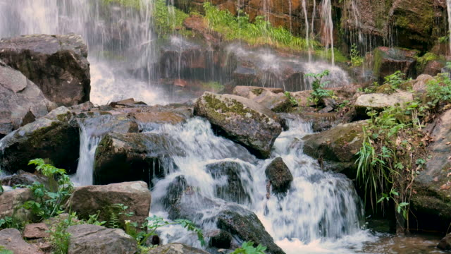 waterfall in the forest - waterfall stock videos & royalty-free footage