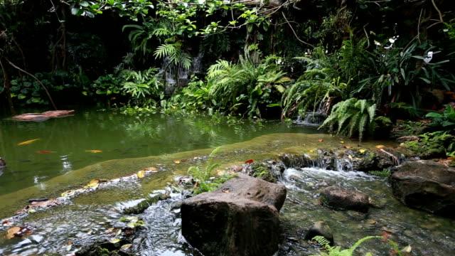Wasserfall im Garten.