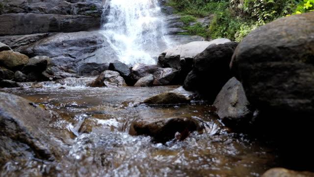 緑の森の自然環境の滝、ドリーショット、スローモーション - 小川点の映像素材/bロール