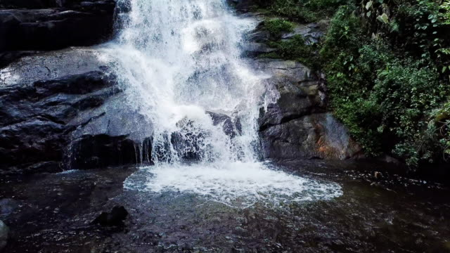 waterfall in the green forest nature environment , dolly shot - river stock videos & royalty-free footage