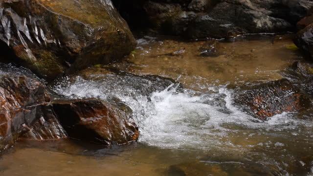 vídeos de stock, filmes e b-roll de cachoeira slo mo na floresta verde - forma da água