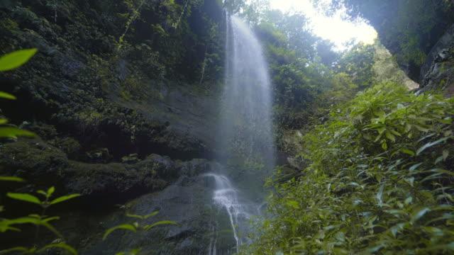 vídeos y material grabado en eventos de stock de cascada ws en medio del bosque verde / islas canarias, españa - acantilado