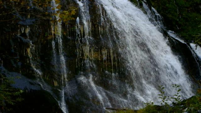 vídeos de stock, filmes e b-roll de cachoeira nas montanhas - full hd format