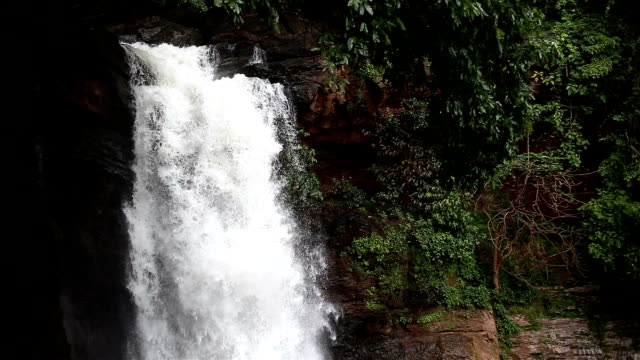 waterfall in the nature - goa stock videos & royalty-free footage