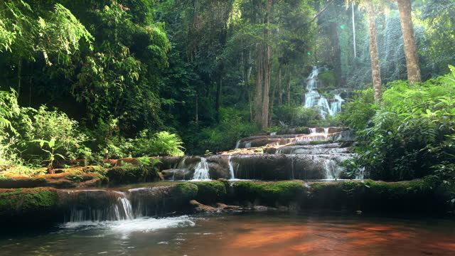 slo mo waterfall in the rainforest seamless loop - loopable elements stock videos & royalty-free footage