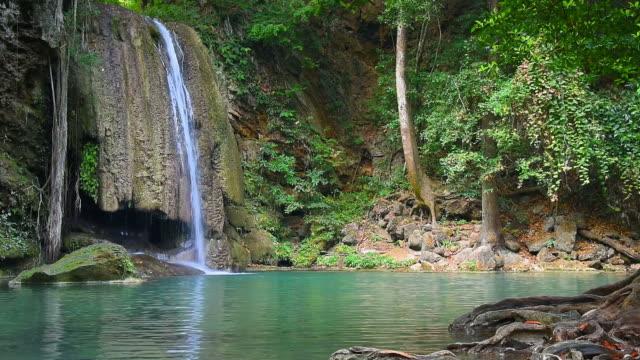 vidéos et rushes de cascade dans la forêt tropicale au paradis - végétation verdoyante
