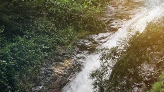 waterfall in tropical paradise (hd loop) - maui stock videos & royalty-free footage