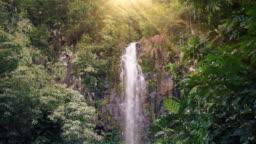 Waterfall in Tropical Paradise (Loop)