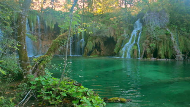 stockvideo's en b-roll-footage met waterval binnen een groen bos, plitvice lakes national park - wildernis