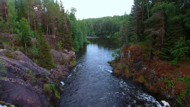 waterfall kivach in the protected forest of northern europe - finlandia video stock e b–roll