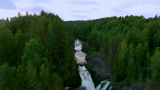 waterfall kivach in the protected forest of northern europe - national landmark stock videos and b-roll footage
