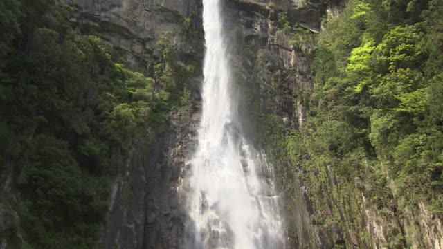 waterfall of nachi in japan - flowing water stock videos & royalty-free footage