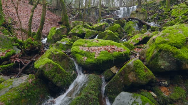 waterfall of wenichbach brook in the natural forest tabener urwald (taben primeral forest), taben-rodt, rhineland-palatinate, germany, europe - moss stock videos & royalty-free footage