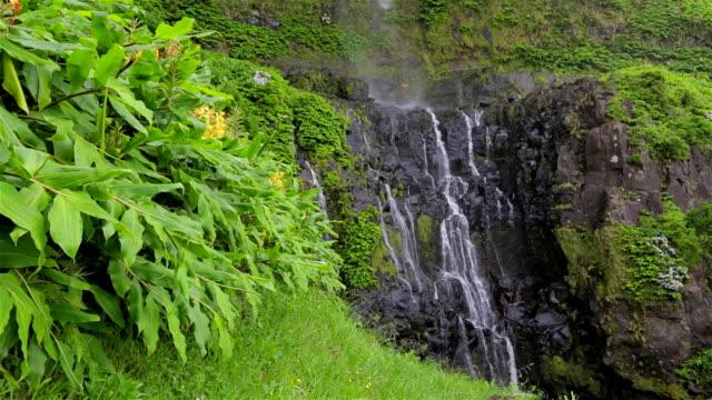 poco は、滝のある bacalhau faja グランデ、フローレス(azoren ) - アゾレス諸島点の映像素材/bロール
