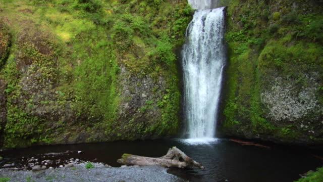 vídeos y material grabado en eventos de stock de cascada de la piscina - cascadas de multnomah