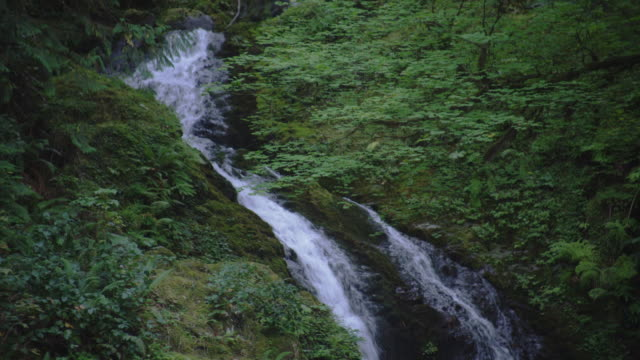 A waterfall pours over a mossy ledge.