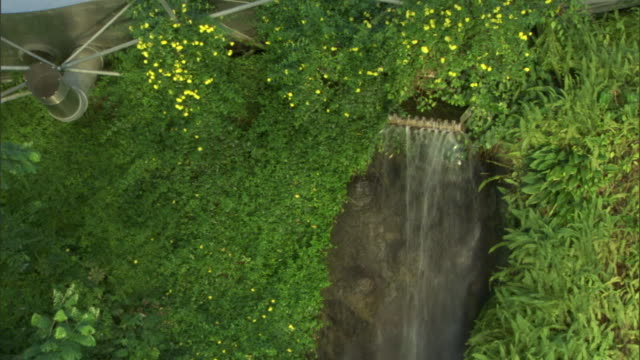 vídeos y material grabado en eventos de stock de a waterfall spills over a cliff surrounded by lush vegetation under a dome at the eden project. - cornwall inglaterra