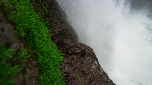 waterfall surges passed plants and rocks - wet stock videos and b-roll footage