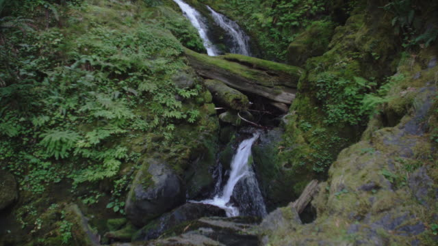 A waterfall trickles over moss covered boulders.