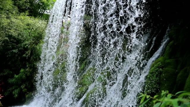 vidéos et rushes de chute d'eau - chute d'eau