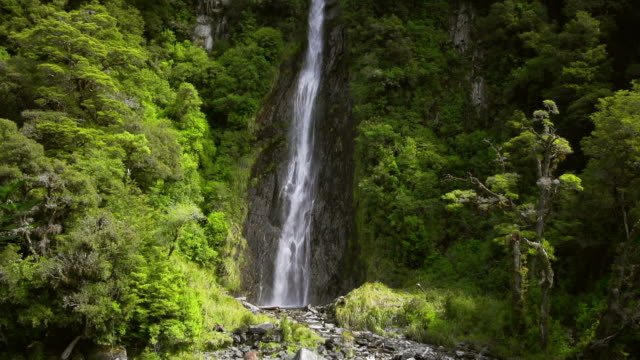 slow motion: waterfall - rainforest stock videos & royalty-free footage