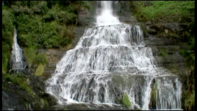 waterfall - aquatic organism stock videos & royalty-free footage
