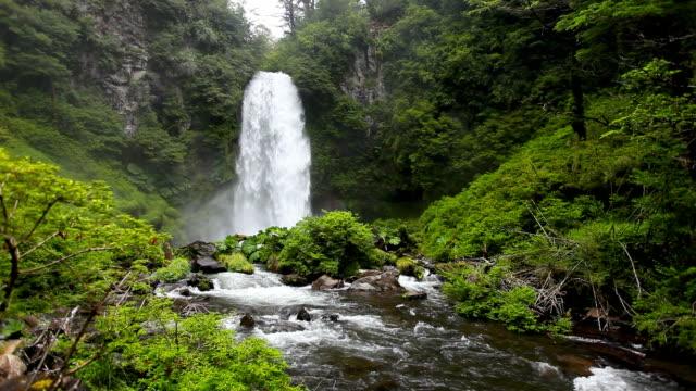 stockvideo's en b-roll-footage met waterfall - chile