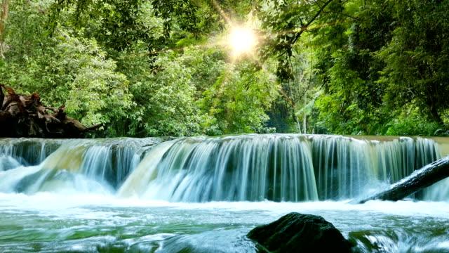 vidéos et rushes de cascade d'eau  - parc national