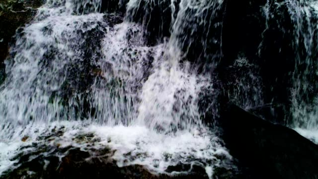vídeos de stock, filmes e b-roll de cachoeira - água doce