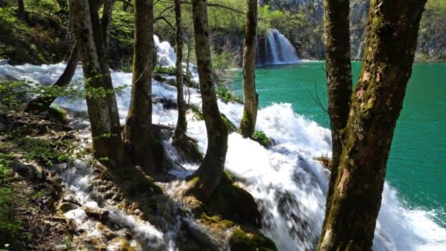 vidéos et rushes de cascade de forêt - lac