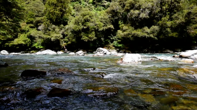 waterfalls and blue creek with green rainforest in west coast in new zealand , slow motion - flowing water stock videos & royalty-free footage