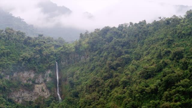ws td waterfalls cascade through dense rainforest jungle. rising clouds / tena, napo, ecuador - ecuador stock videos & royalty-free footage