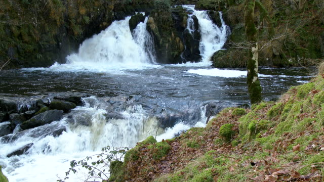 waterfalls in a rural setting in dumfries and galloway, scotland - johnfscott stock videos & royalty-free footage