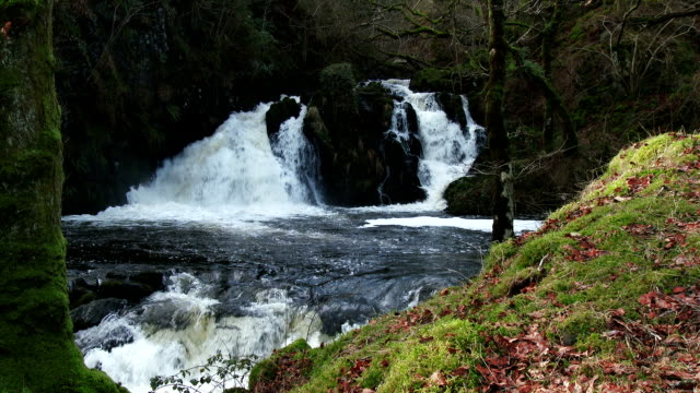 waterfalls in a rural setting in dumfries and galloway, scotland - galloway scotland stock videos & royalty-free footage