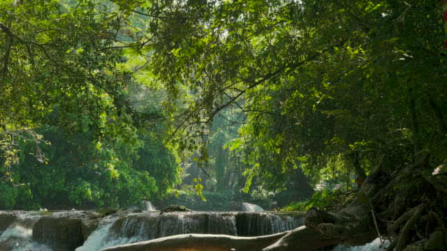 vídeos de stock e filmes b-roll de 4k waterfalls in in the stunning nature of jed sao noi fall. thailand. - folhagem viçosa