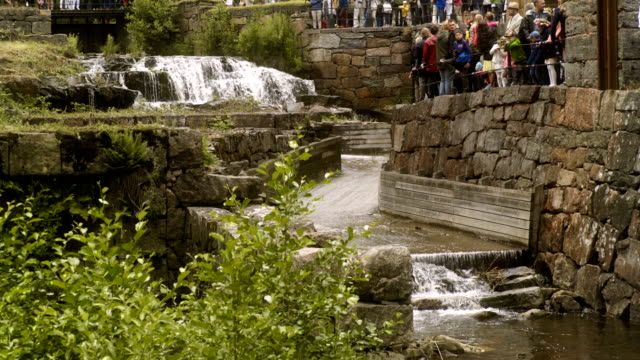 stockvideo's en b-roll-footage met waterfalls in sweden - zomerzonnewende
