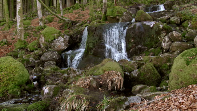 Waterfalls on a stream in rural dumfries and Galloway, Scotland