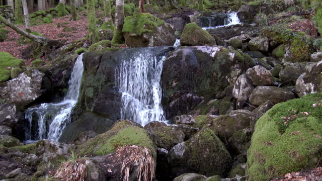 waterfalls on a stream in rural dumfries and galloway, scotland - johnfscott stock videos & royalty-free footage