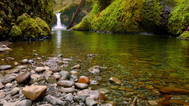 vídeos y material grabado en eventos de stock de cascadas. - noroeste pacífico de los estados unidos
